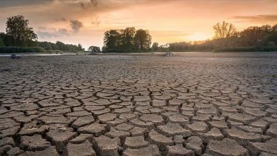 Photo of What does the UN climate report mean for Africa?