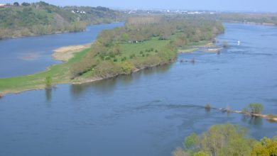 Photo of The Loire, France's still-wild river